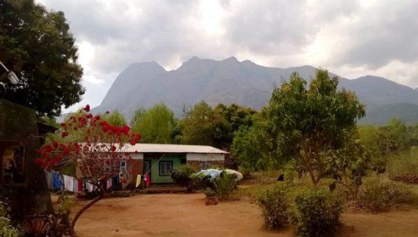 malawi stop